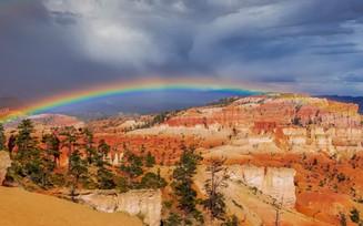 Rainbow Bryce Canyon National Park Bryce, UT
