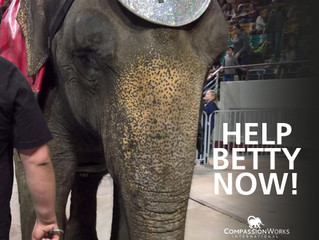 Betty Needs You Now!
