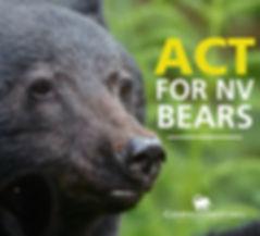 ACT FOR Nevada BEARS.JPEG