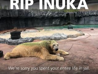 RIP Inuka