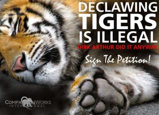 Dirk Arthur's Abusive Tiger Act Returns
