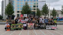We Rallied for Cecil!
