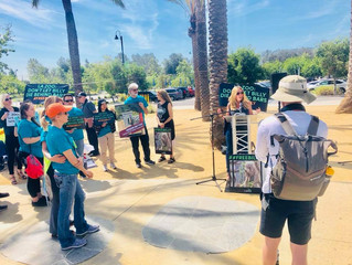 Speaking up for Billy at the LA Zoo