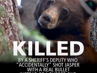 Demand Justice for Jasper