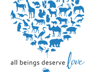 All Beings Deserve Love
