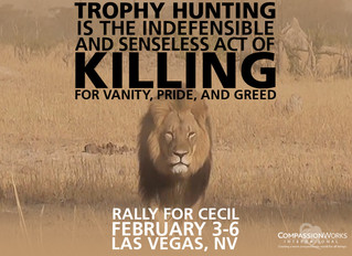 Rally For Cecil! Protest Trophy Hunting!