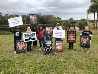 Thank You Ft Myers, FL Circus Protesters!
