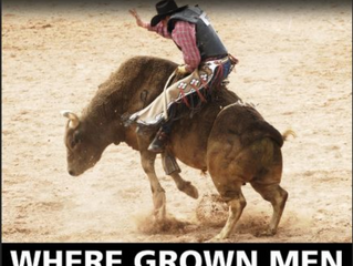 Bull Riding Protest
