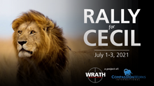 Rally For Cecil is a go!