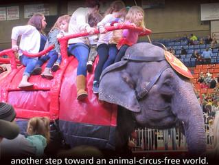 NV Bans Elephant Rides!