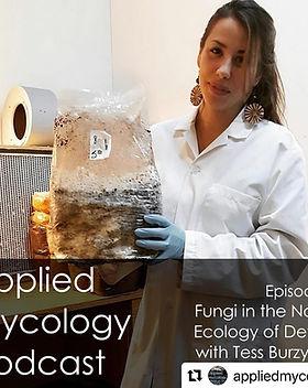 applied mycology podcast.jpg