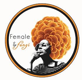 femfun-logo23.jpg