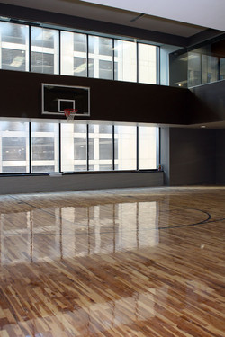 Basketball Maple