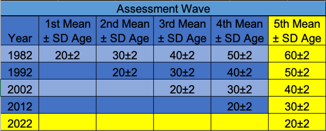 Assessment Wave Redo.png