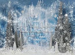 14 winter princess.jpg