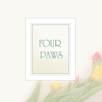 Four Paws 10x10.jpg
