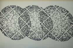 Brittlestars