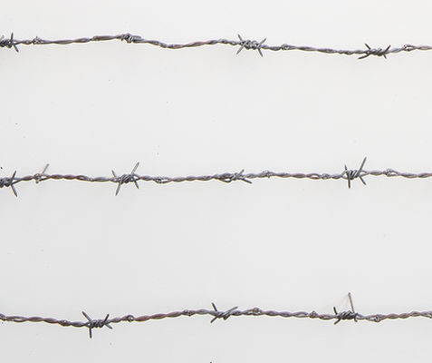 dream on, barbed wire, migration case, merican steel, bisbee, john, cmca, nails, art, sculpture, political art