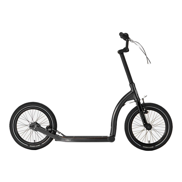 Adult_Teen Scooter No Background