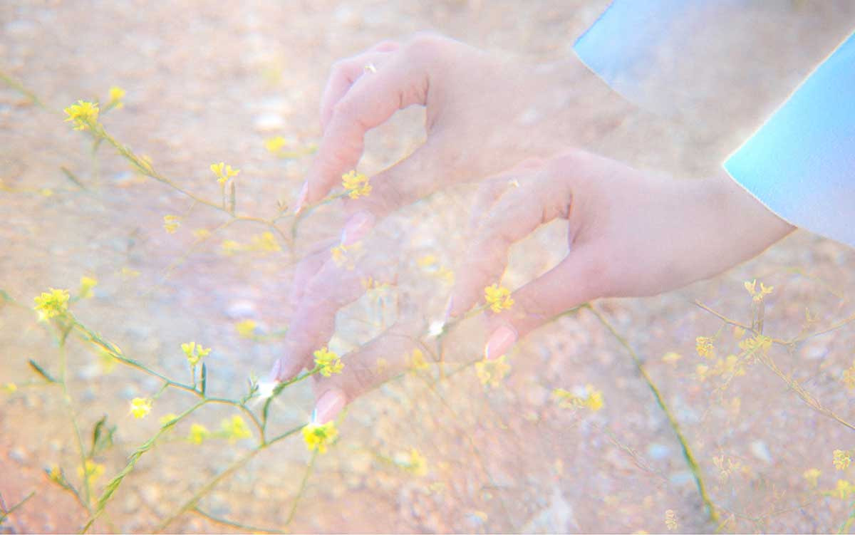 tripple exposure picking flowers