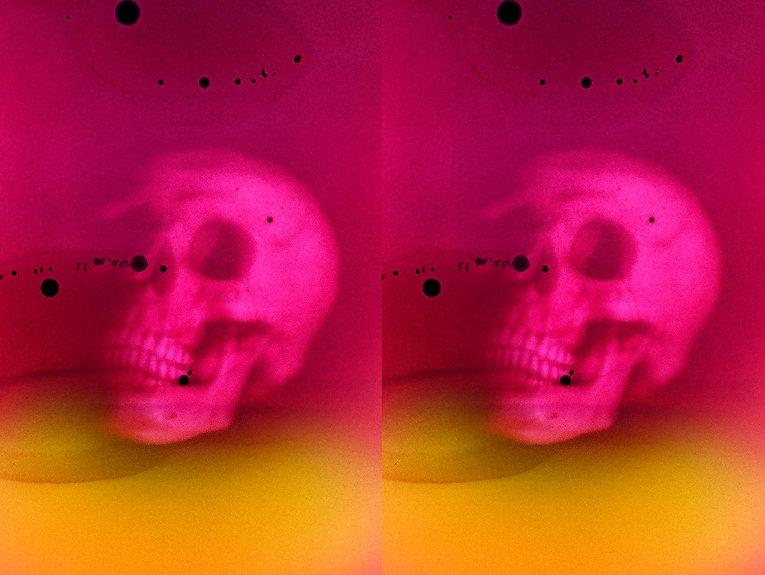 castro-frank-pink-double-skull.jpg