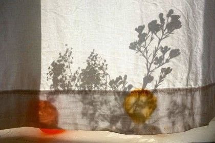 #summer #shadows.jpg