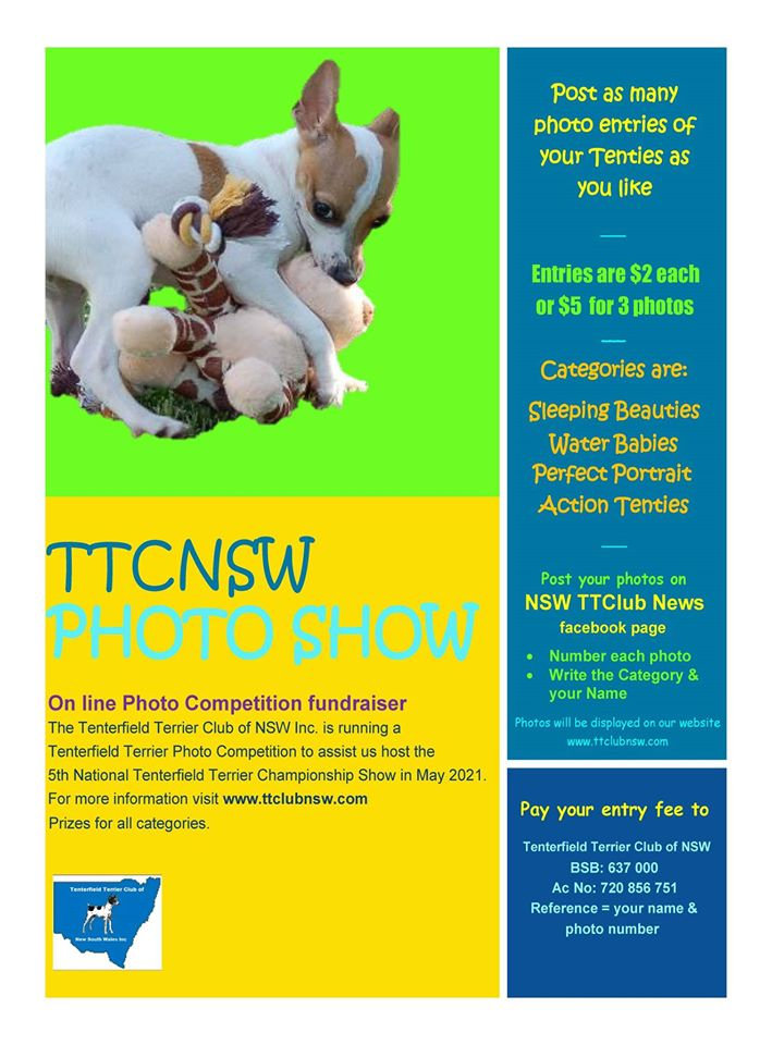 Photo comp flyer.jpg