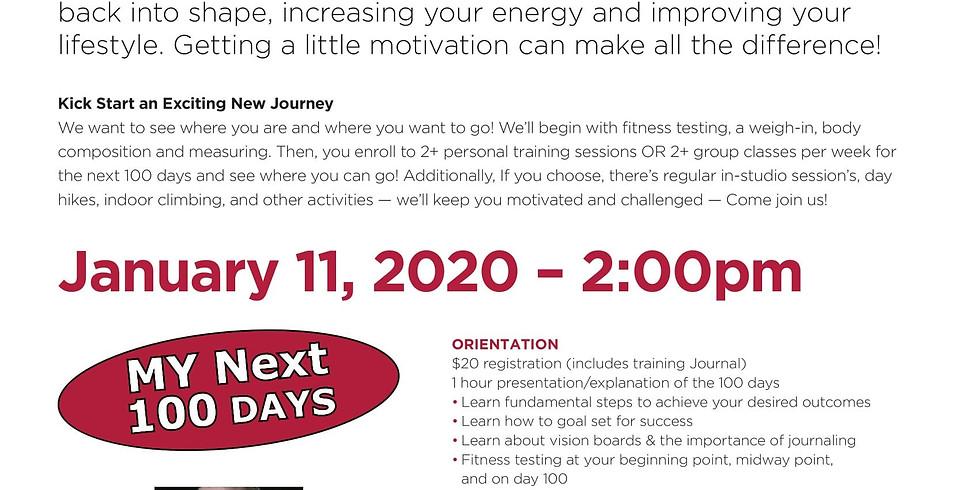 My Next 100 Days Launch January 11 2020 2pm