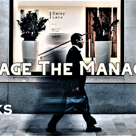 Manage the Managers - Business Skills