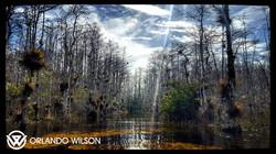 Adventure Travel, Survival Training & Hiking in Florida Everglades