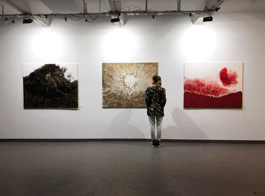 "Exhibition of the series ""Elements part I"""