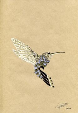 Zippy Hummingbird