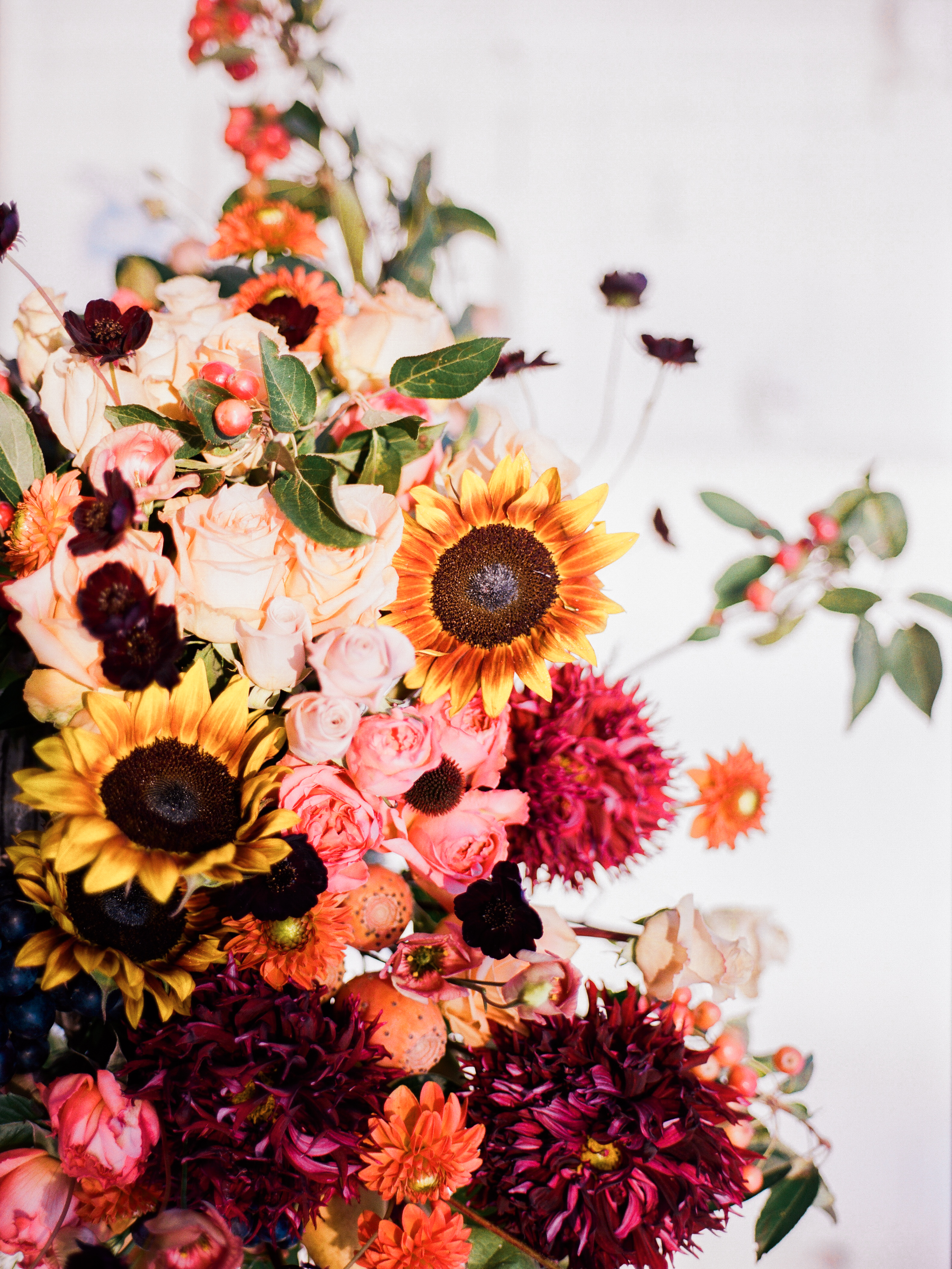 flowers with georgia -020