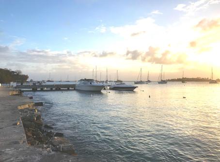 Mars 2019 Carriacou et Grenade