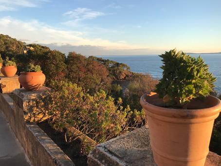 Visite du jardin des Méditerranées