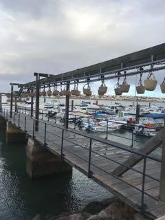 Astuces pour automatiser le déchargement des sardines directement dans les bateaux
