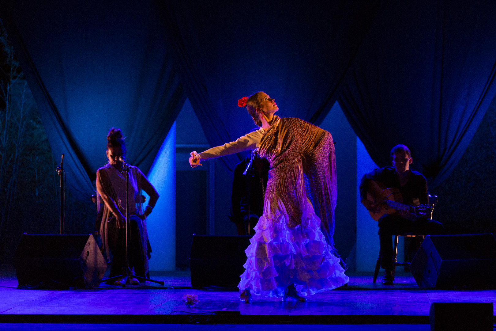photography photographie concert  sing performer dancer performance dance flamenco