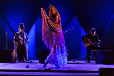flamenco à sète