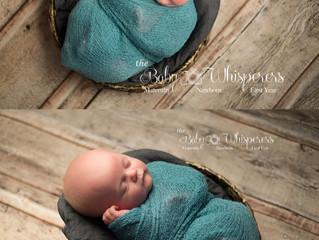 6 week old sweet Baby Finn