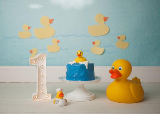 Cake Smash Littleton Photographer