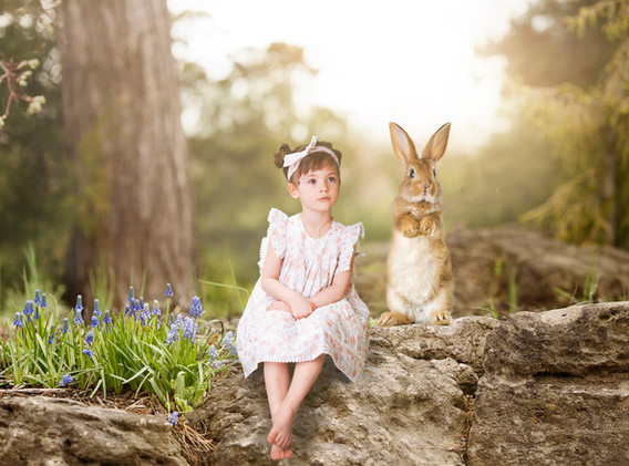 EasterBunnyForestSamsDreamThemes02.jpg
