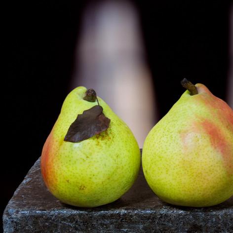 Two Pears One Leaf 2001.jpg