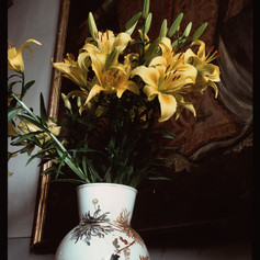 WilmasLilies,Tuscany  1992.jpg