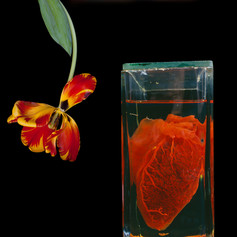 Heart and Flower.jpg