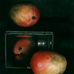 5_Mangoes   1978.jpg