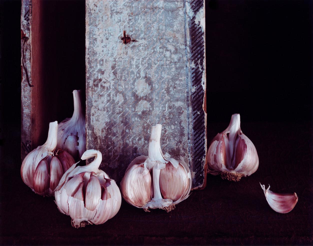 18_Garlic   1981.jpg
