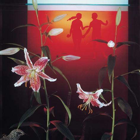 4_Eden under Glass 1983.jpg