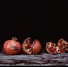 Pomegranates On Cookhouse Ledge 1992.jpg