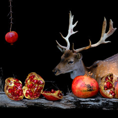 Deer with Pomegranates 1993.jpg