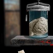 Vanitas-The Murderer's Brain.jpg